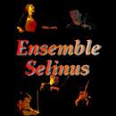 Ben oltre il Quartetto d'Archi!  Il Ensemble Selinus nasce come quartetto d'archi nel...